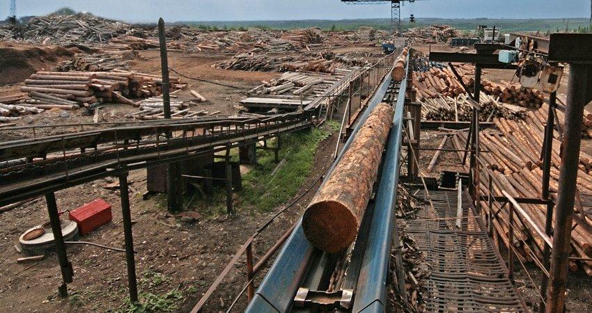lumber factory